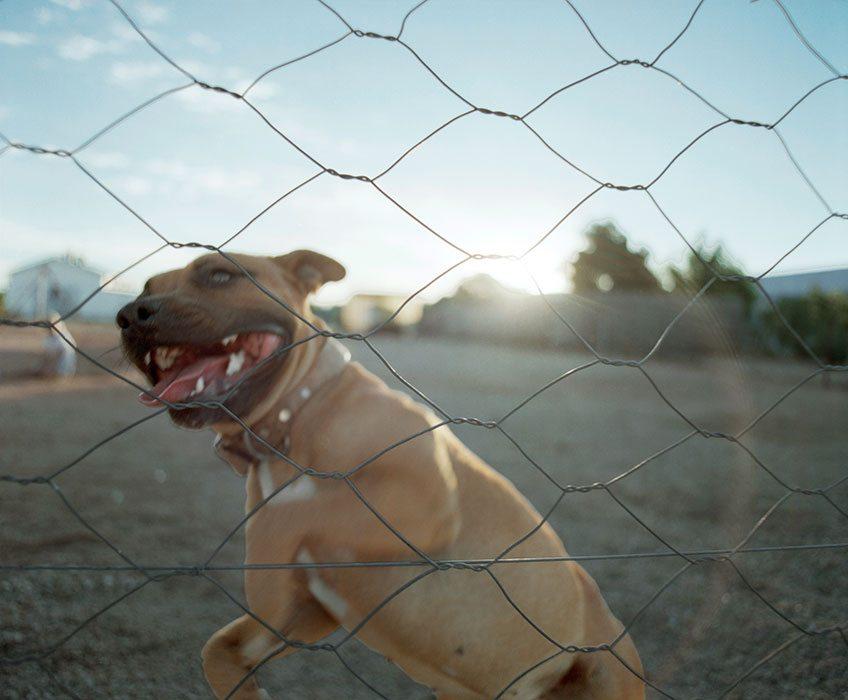 Joris-den-Blaauwen-Fotograaf-Zuid-Afrika 154
